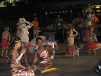 Kangaroo_Dance